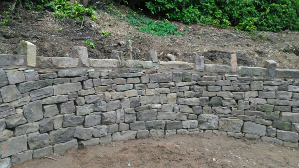 picture of a curved dry stone wall near Preston in Lancashire.